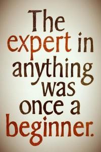 Expert and beginner