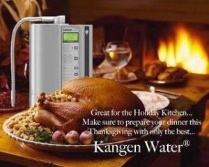 Kangen and Turkey